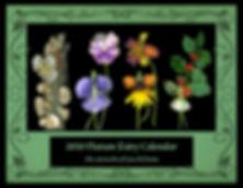 Nature Fairy Calendar Cover