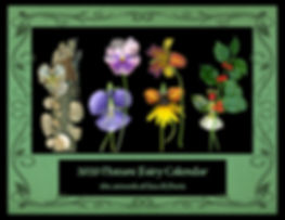 Nature Fairy Calnedar, calendar, Nature Fairies, Flower Fairies, Lisa R Davis