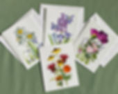 Flowers and Fairies notecards by Lisa R Davis from Wallflowers And Cards