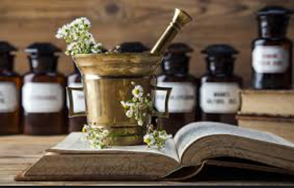 About Herbal Medicine