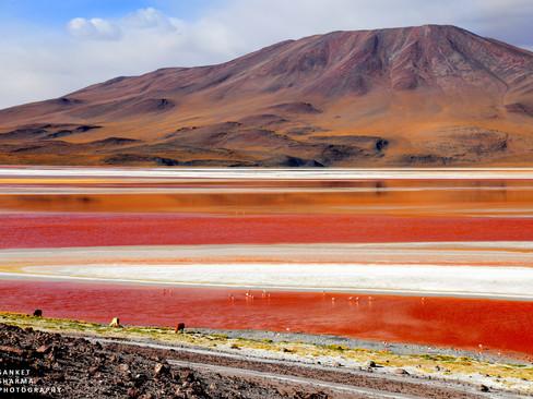 Altiplano region of South America