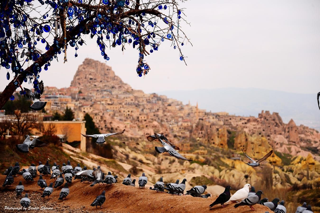 Pigeon Valley, Cappadocia, Turkey