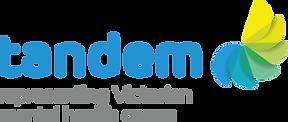 Tandem log with tagline Representing Victorian mental health carers