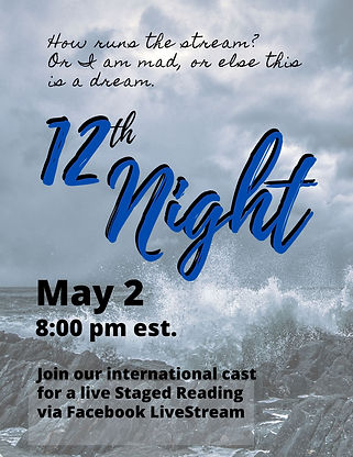 12th night flyer 5 2 20.jpg