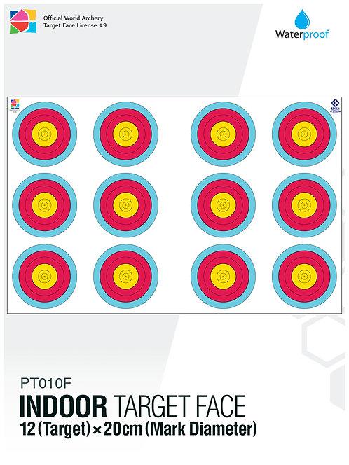 INDOOR TARGET FACE 20×12