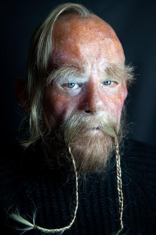 Viking Björn
