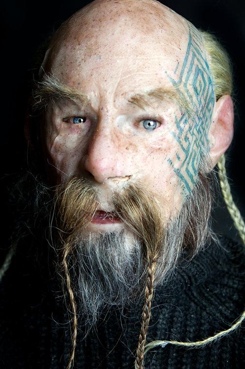 Viking Ivar