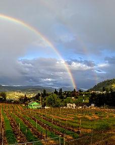 Rainbow over Kaleden