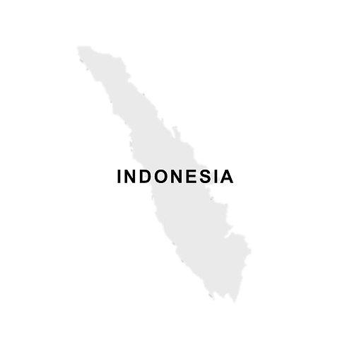 Indonesia Mandheling Sumatra G1