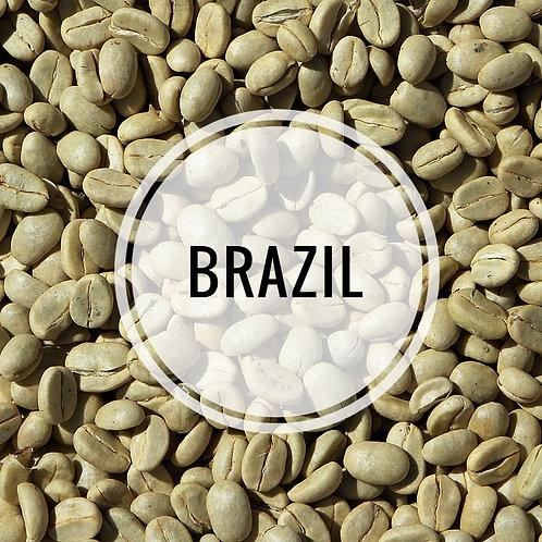 Brazil Green Bean