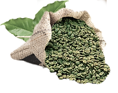 green-coffee-bean-extract-reviews2.png