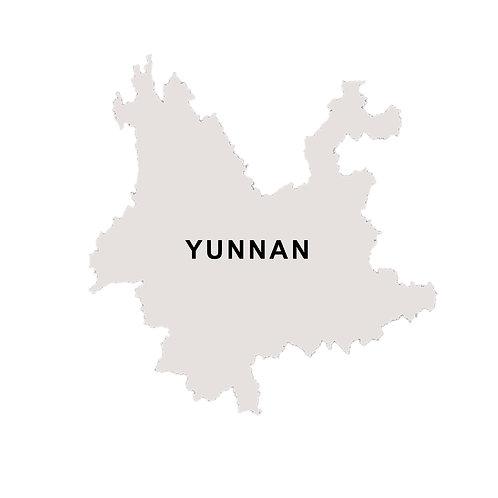 Yunnan Lian Hua Tang Catimor