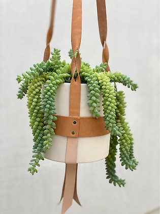 "Leather Plant Hanger #4 with a 6"" ceramic pot"