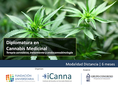 Banner Cannabis.png