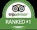 tripadvisor ranked.png