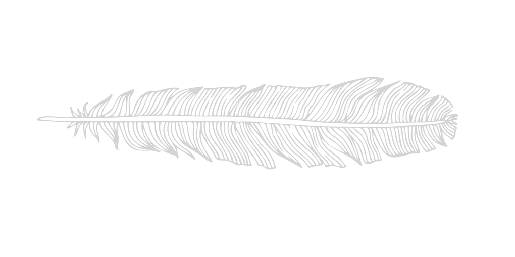 Feather -01.png
