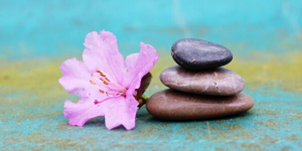 Meditação Raja Yoga