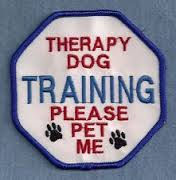 therapy%20dog.jpeg
