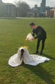 Tea Performance