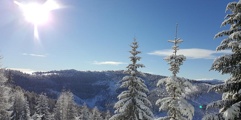 Skifahren in Kärnten 2021