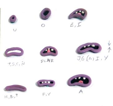Process / mouthes