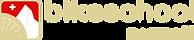 BikeSchoolZermatt_Logo.png