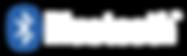 logo-bluetooth-png-7 copia.png