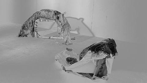 2. portia-The Flea副本.jpg