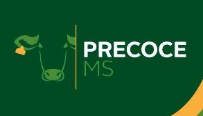 Reformulado, programa Precoce MS abateu 798 mil animais em um ano e meio