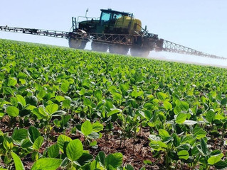 Brasil ganha primeiro defensivo biológico para aplicação após a colheita