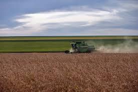 SOJA/CEPEA: Colheita tem início em MT e deve ser intensificada em janeiro