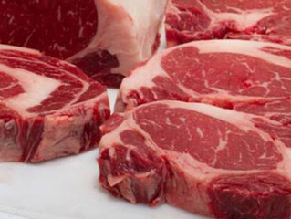 Carne Angus é destaque no maior festival de churrasco do Sul do Brasil