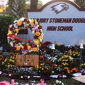 Marjory Stoneman Douglas alumna reflects on shooting one year later
