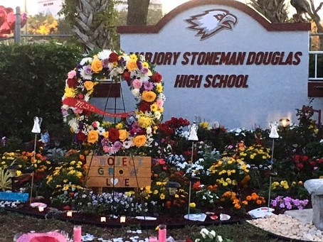 Marjory Stoneman Douglas alumna reflects on shooting one year later