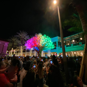 Say goodbye to CityPlace and hello to Rosemary Square this holiday season
