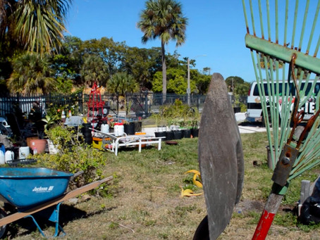 Vietnam veteran driven to uproot food desert in Palm Beach County