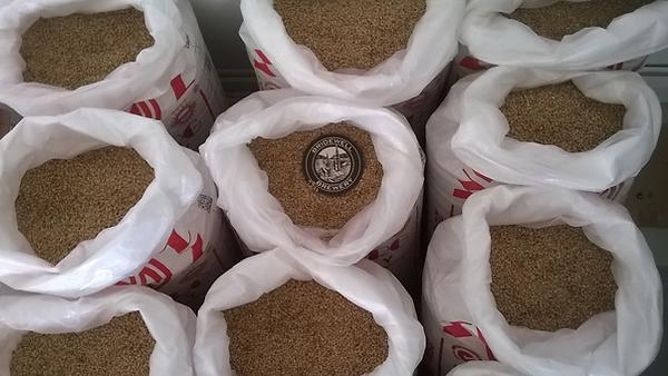Bridewell Brewery malted barley.png