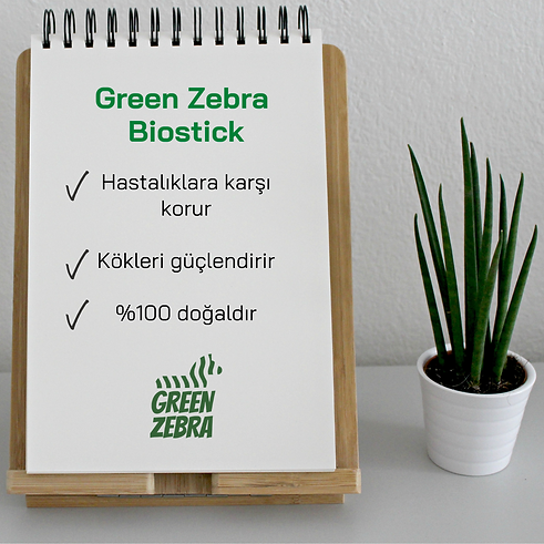 Green Zebra Biostick Hastalıklara karşı