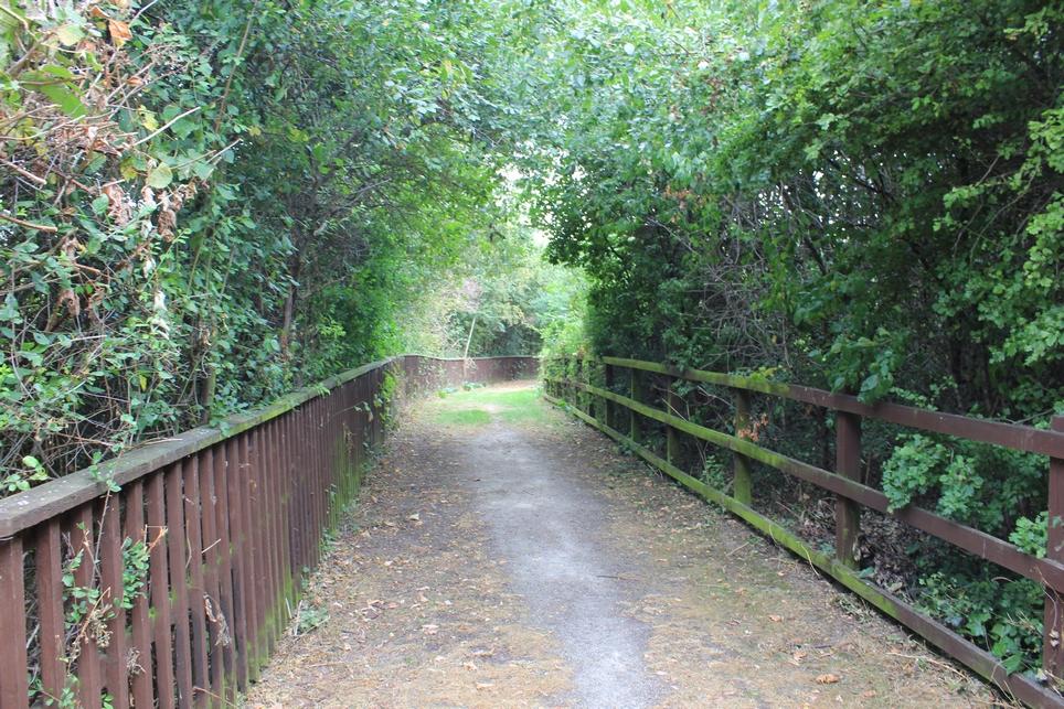Paddock Nature Reserve