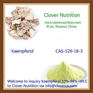 Kaempferol 10% HPLC info@clovercn.com