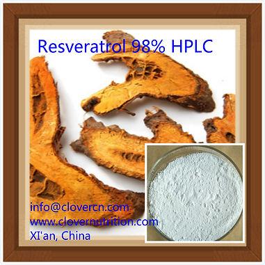 Giant Knotweed Extract/Polygonum cuspidatum extract/ Japanese knotweed resveratrol powder/Trans resveratrol supplements
