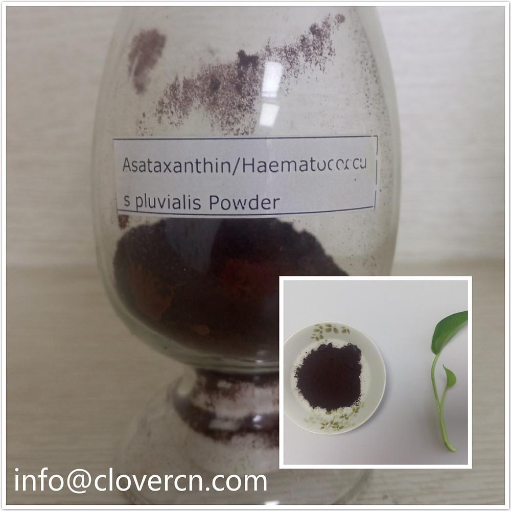 Astaxanthin  Haematoccus Pluvialis Powder