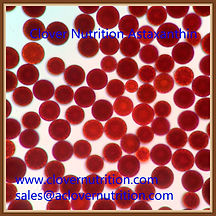 Asataxanthin-Haematococcus pluvialis