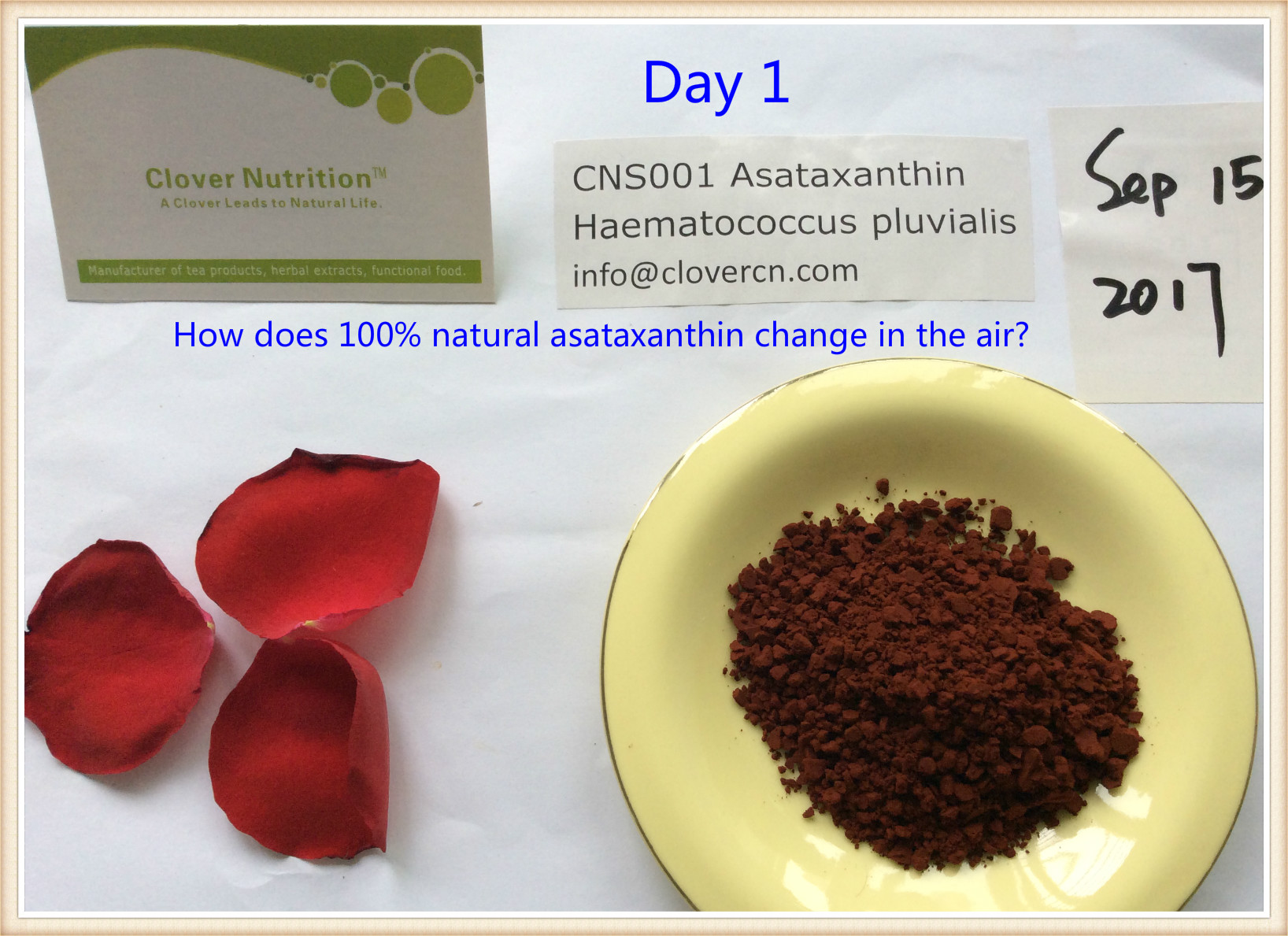 Buy Astaxanthin 100 natural and synthetic Astaxanthin