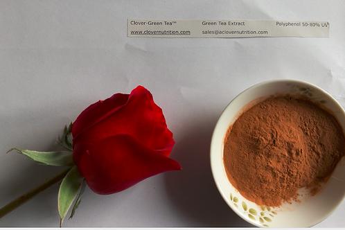 CNS043 Green Tea Extract Powder