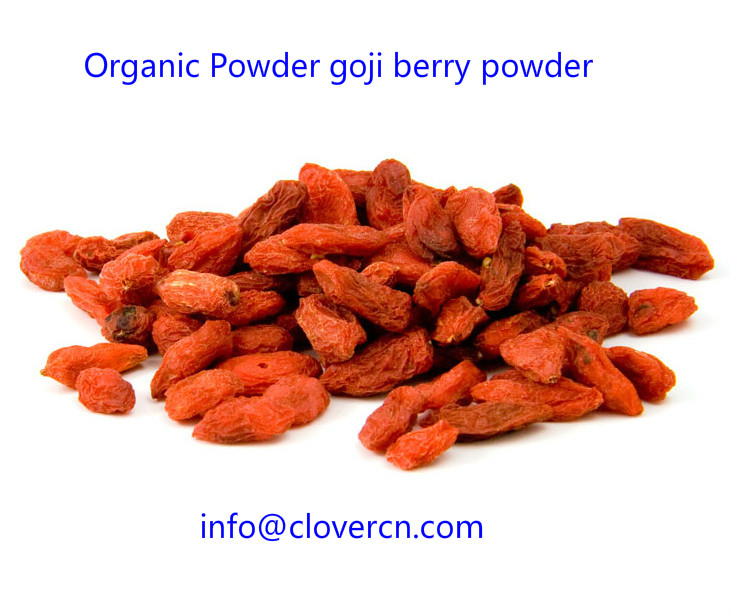 Organic Powder goji berry powder A Clover Nutrition Inc.jpg