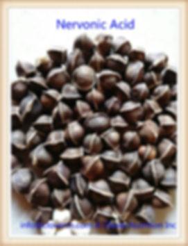 Truncatum Extract Nervonic Acid 90