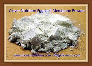 Eggshell Membrane