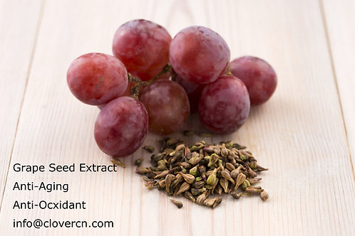 Grape Seed Extract OPC 95% UV