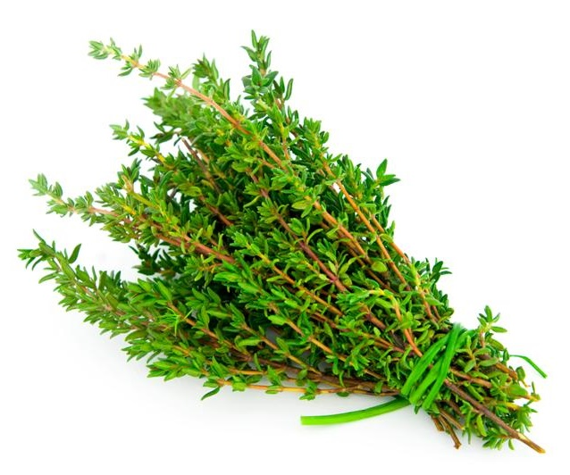 Organic Powder Thyme powder.jpg